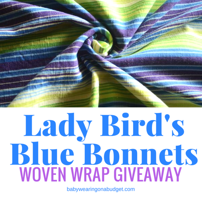 smitten-with-wovens-giveaway-ladybird